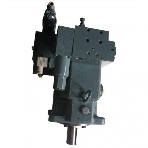 Yuken A100-F-R-04-C-K-A-3266       Piston pump #2 image